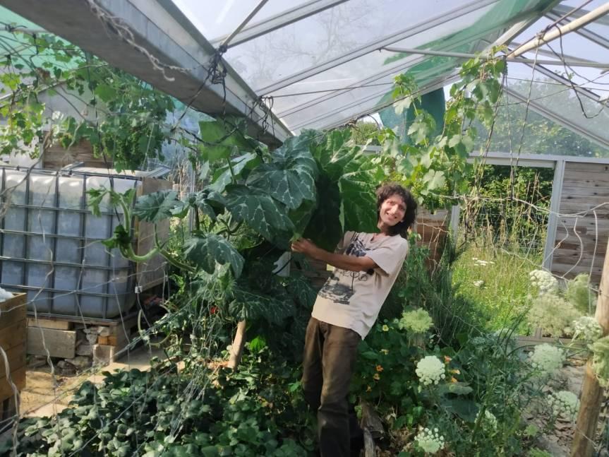 L'abondance au jardin